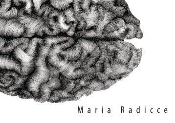 Portfólio Maria Laura Radicce