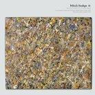 Pollock's Paradigm - Page 5