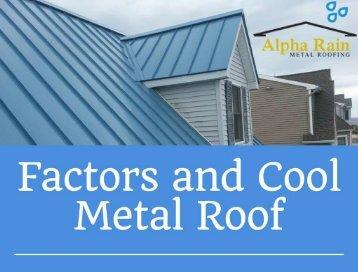 Energy Efficient Cool Metal Roof - Alpha Rain