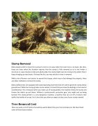 Tree services Long Island - Page 2