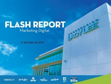 FlashReport Enero 11