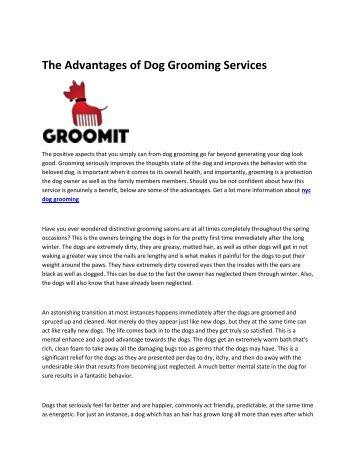 7 Dog grooming nyc
