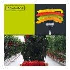 Semillas de hortalizas | Mexico 2018 - Page 4