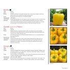 Semillas de hortalizas | Mexico 2018 - Page 7