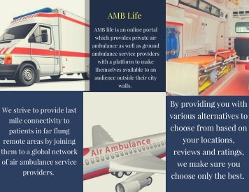 Private Ambulance Service Provider –AMB Life