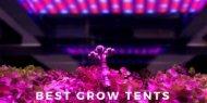 Best Grow Tent Kits