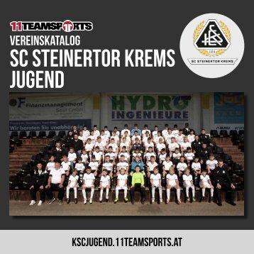 Online KSC Jugend