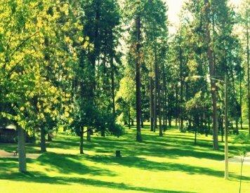 Audubon Park 2.8 miles to the south of Spokane orthodontic center 5 Mile Smiles