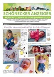 Schönecker Anzeiger August 2014