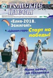 плесы ноябрь декабрь  2017