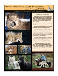 2012 Newsletter - Wolf Hollow