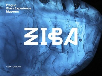 ZIBA_final_overview_Klara_presentation_print preview
