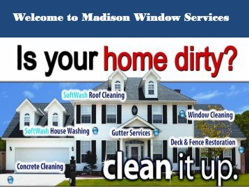 Professional window washers madison