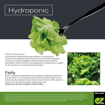Leaflet Hydroponic 2018