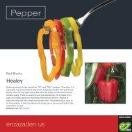 Leaflet Pepper Blocky 2018