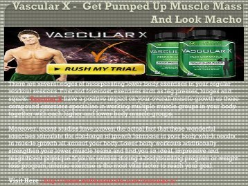 Muscle 720 - To Get A Strong And Muscular Body