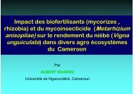 Impact des biofertilisants (mycorizes , rhizobia) et du ...