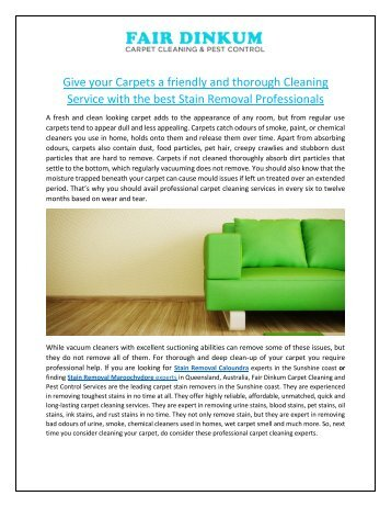 Give your Carpets a friendly and thorough Cleaning Service with the best Stain Removal Professionals
