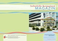 Selbsthilfe Burgenland Magazin 3