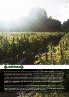 Sweet Seeds® 2018 - Deutsch - Seite 2