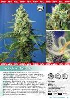 Sweet Seeds® 2018 - Deutsch - Seite 7