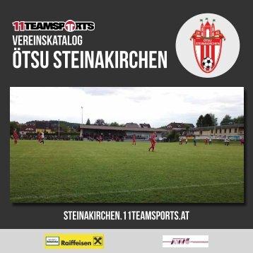 Online Steinakirchen1