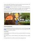 Tree removal service Nassau County NY - Page 3