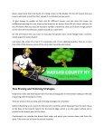 Tree removal service Nassau County NY - Page 4
