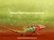 Printed Wall Paper in Australia - Chameleon Print Group