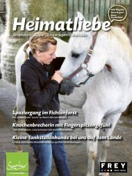 HEIMATLIEBE-BIGGESEE Augabe 3 Winter 2017/18