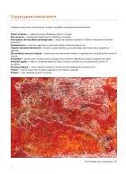 LIKOVNA UMETNOST I KULTURA - Uvod u likovnu kulturu 2 - Page 6