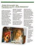 SN_Info1-17 - Seite 5
