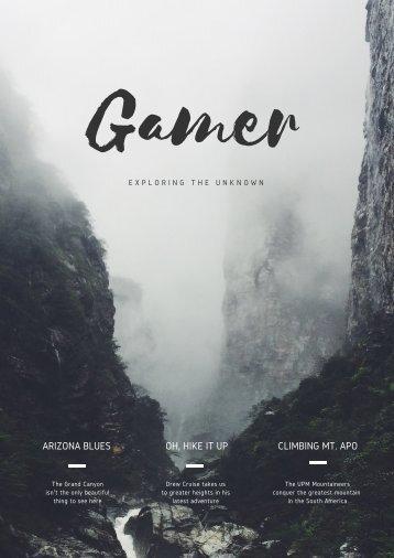 gamer (1)