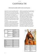Hengstenbrochure Nijhof - Engels - Page 6