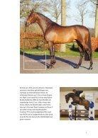 Hengstenbrochure Nijhof - Nederlands - Page 7