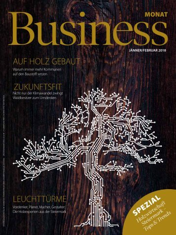 Businessmonat_Ausgabe 2018-01