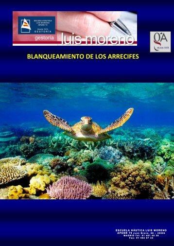 BLANQUEAMIENTO DE LOS ARRECIFES - Elmundo