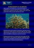BLANQUEAMIENTO DE LOS ARRECIFES - Elmundo - Page 4