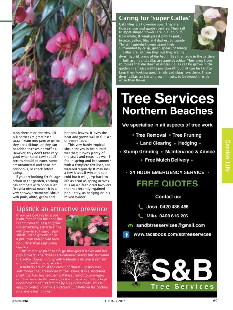 Pittwater Life February 2017 Issue