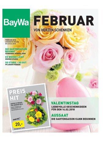Zeitung Februar 2018