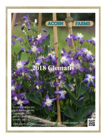 Acorn Farms 2018 Clematis