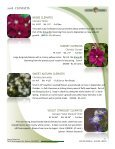 Acorn Farms 2018 Clematis - Page 6