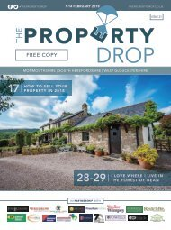 Property  Drop Issue 21