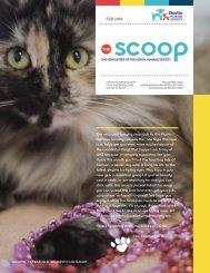 The Scoop | Feb 2018