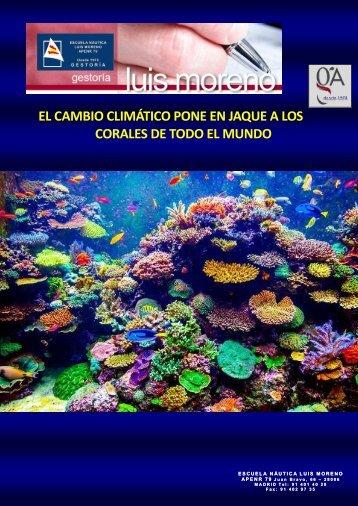 EL CAMBIO CLIMÁTICO PONE EN JAQUE A LOS CORALES DE TODO EL MUNDO - Elmundo