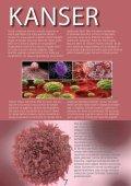 Inovatif Kimya Dergisi Sayi 55 - Page 7