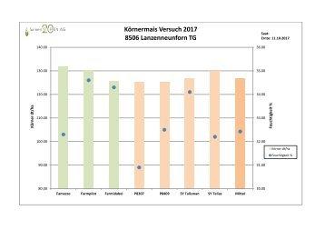 20180118 KM_Versuch 17_ Lanzenneuenform_d