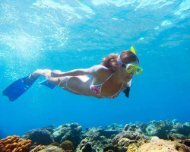 ZigZag Whitsundays Day Tour Including Snorkeling and Whitehaven Beach