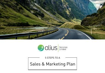Alius- 5 Steps to a Sales & Marketing Plan