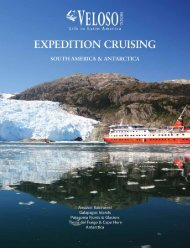 Veloso Tours - Expedition Cruises